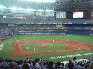 baseball 239